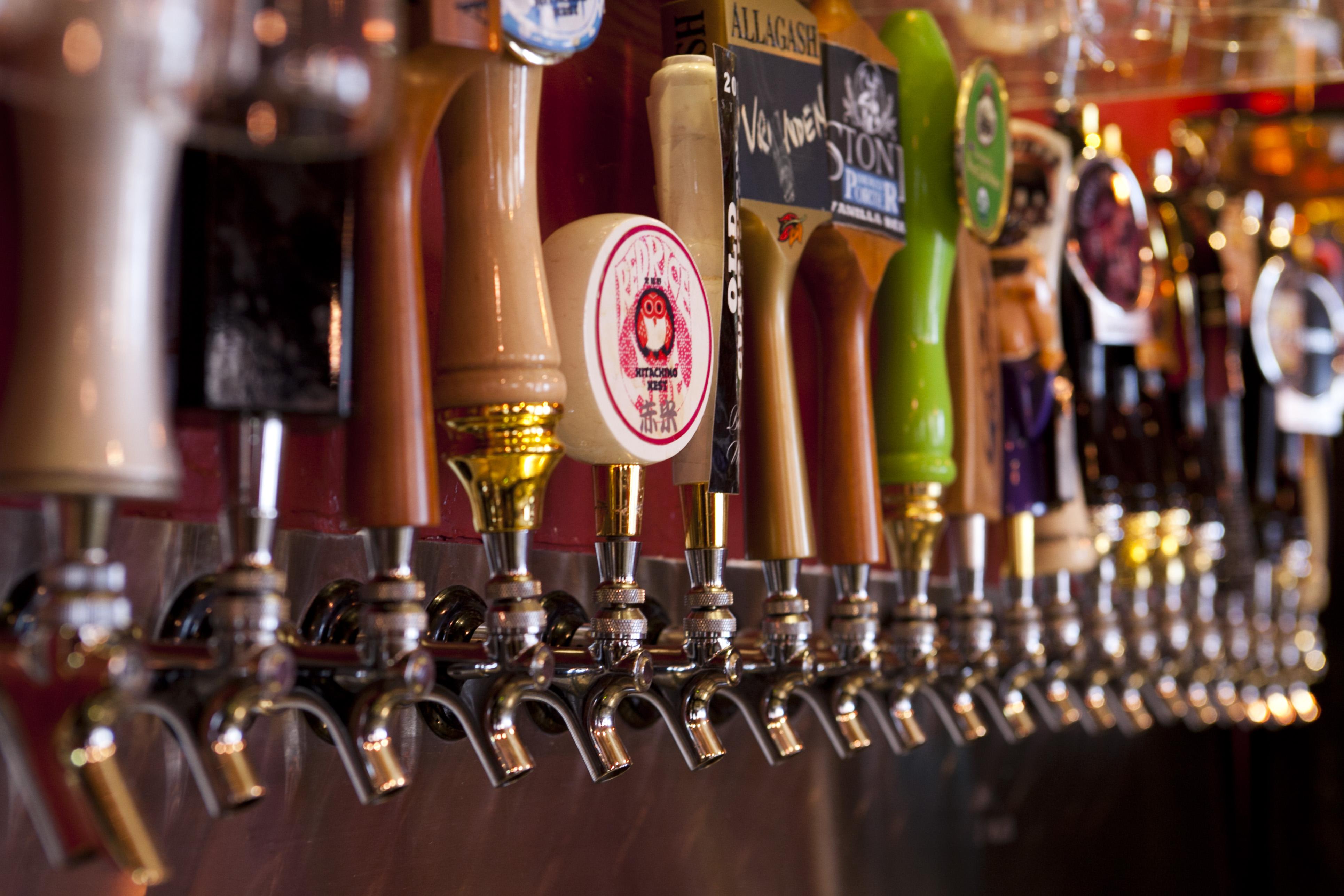 International beer day celebrity slice